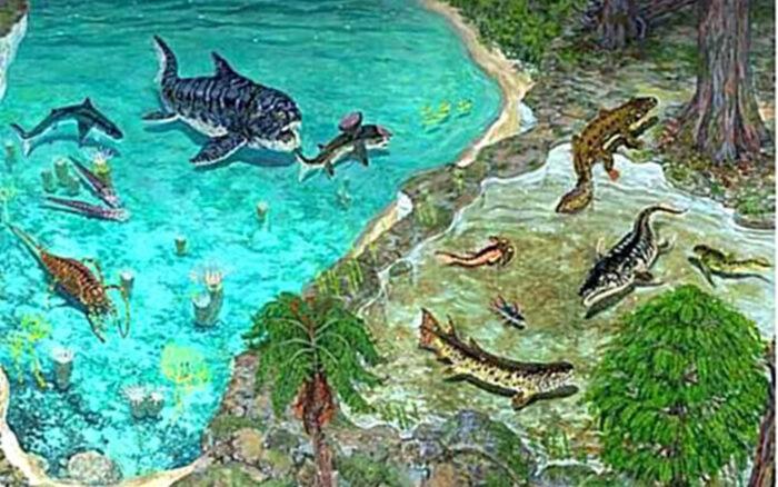 Эволюция рыб