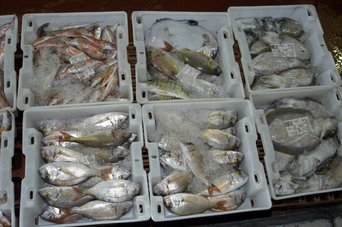 Рыбная тара